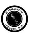 Boreham Wood    crest
