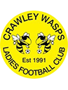 Crawley Wasps Ladies  crest