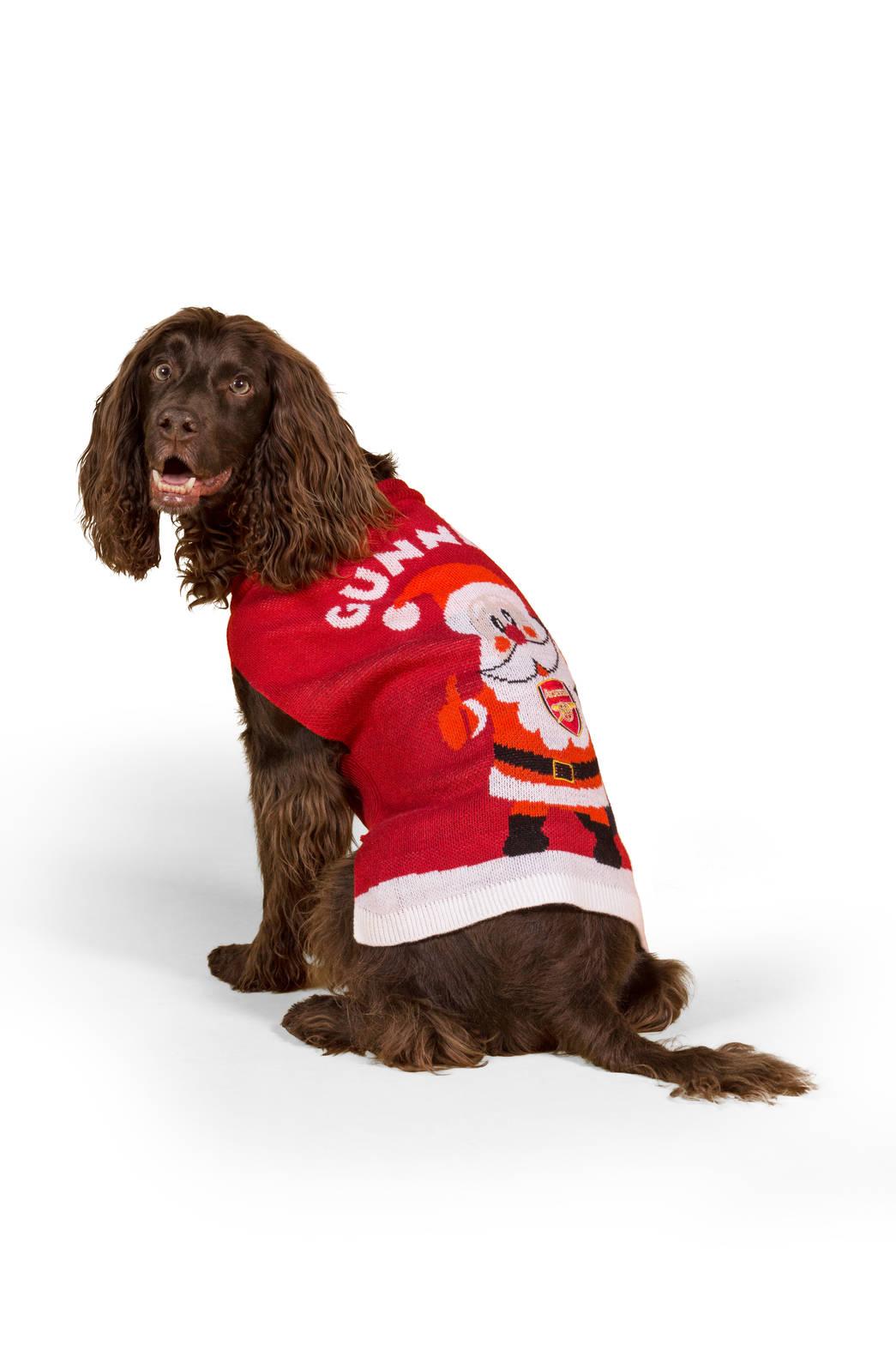newest 261bc f1319 Arsenal Football Shirt For Dogs | Azərbaycan Dillər Universiteti